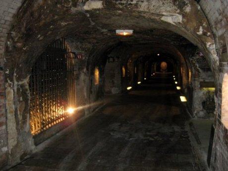 moet-cellars