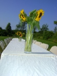 sunflowers on dining table 2